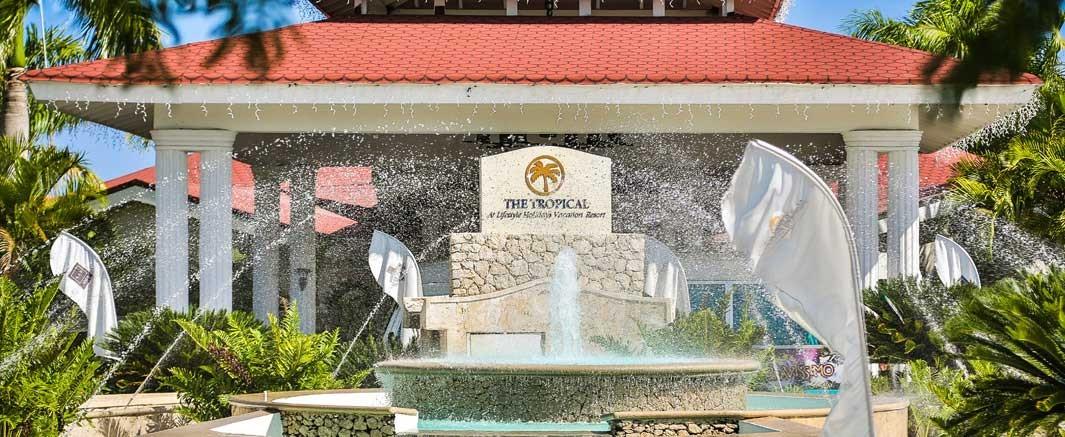 The Tropical Fountain